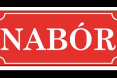 Nabór na wolne stanowisko pracy do spraw poboru podatków i opłat lokalnych