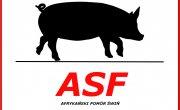 Spotkanie informacyjne dotyczące Afrykańskiego Pomoru Świń - ASF